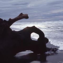 ore-beach-2